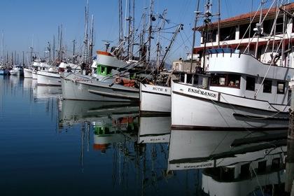 boatssf2.jpg